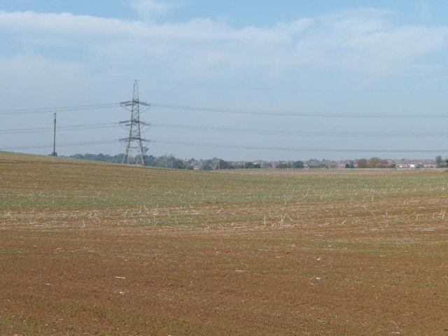 Greening field with pylon