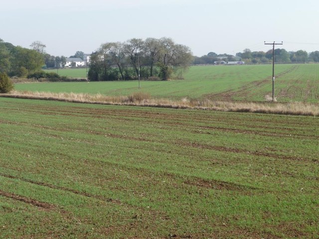 Drainage dike running across a greening field