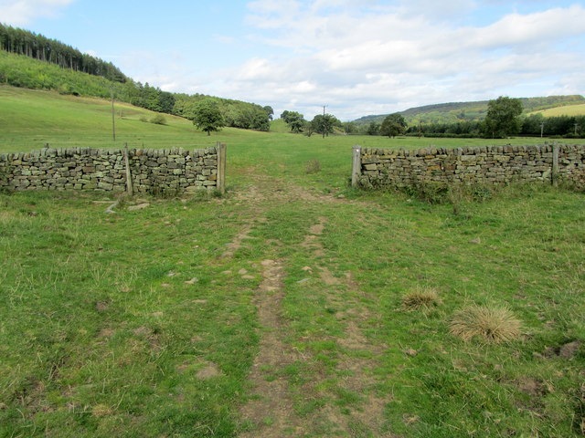Footpath below Lindop Wood