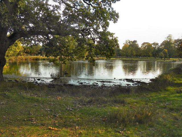Smithy Pool, Dunham Park