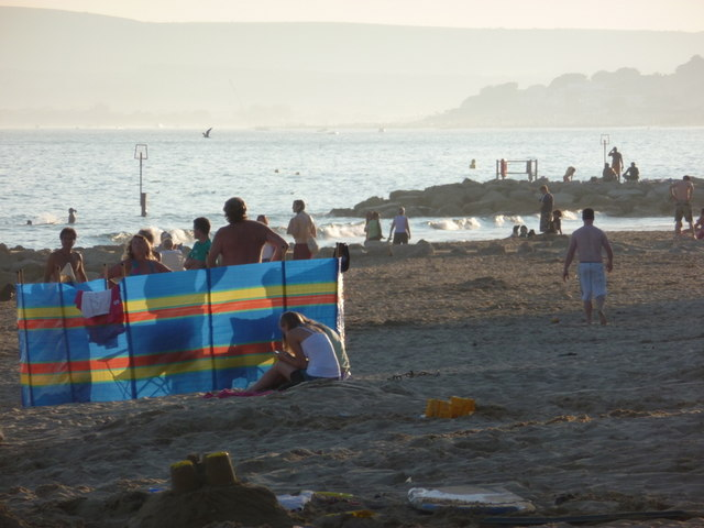 Branksome: windbreak on a sunny evening