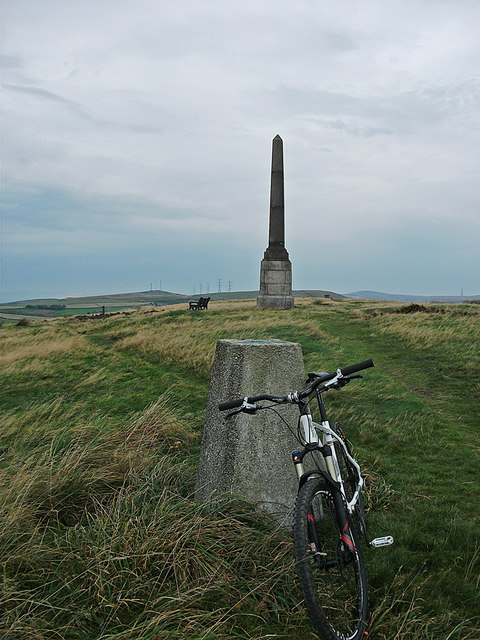 Trig pillar and monument, Bishop Park