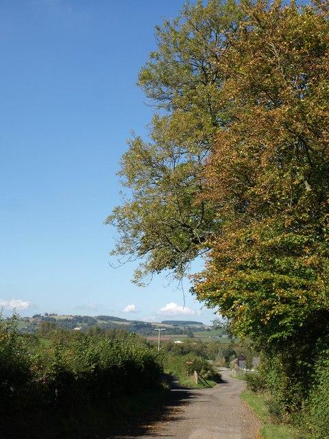 Farm lane to Abergwdi