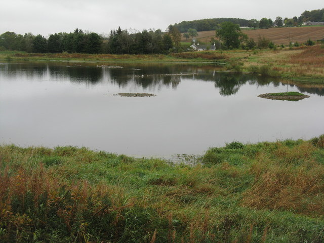 Pond at Murton