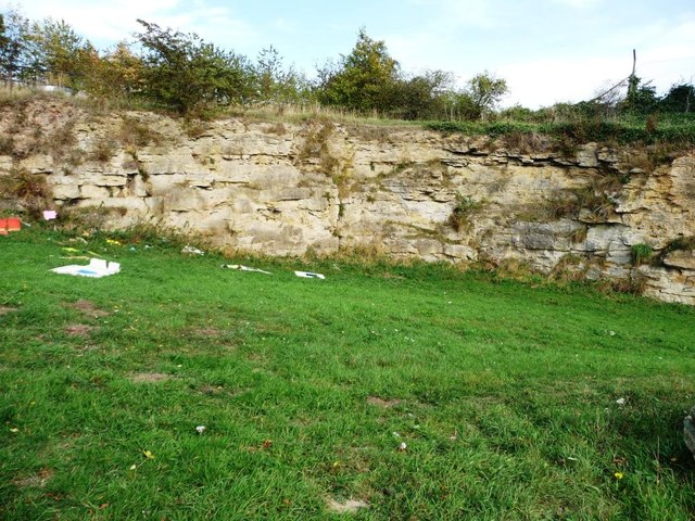 Northern face, former South Elmsall quarry