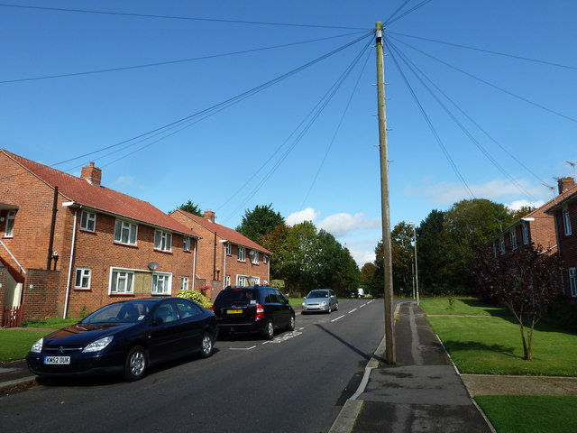 Telegraph pole in Wilmott Close