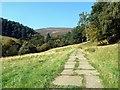 SK1286 : Approaching Edale Moor : Week 39