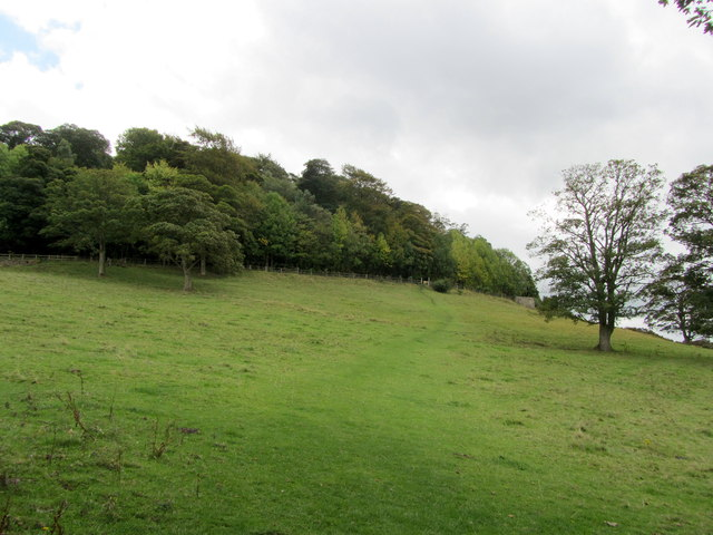Ascending towards Sheepwalk Wood