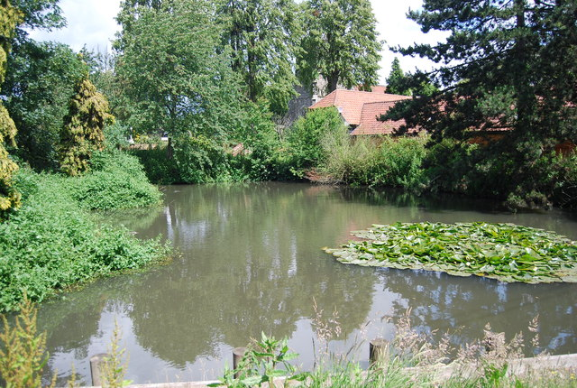 Pond, North Ockenden