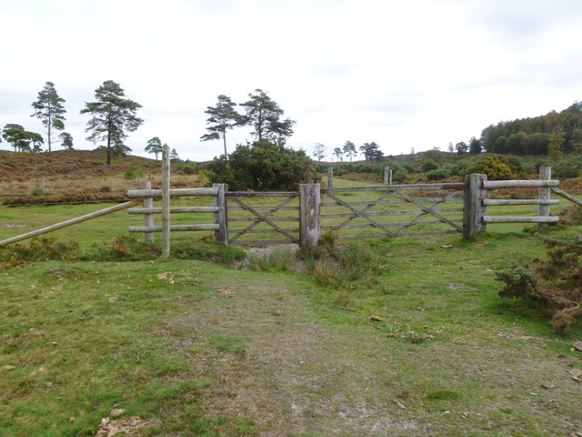 Bisterne Common, gates
