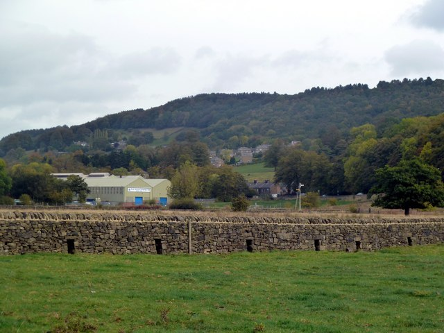 Dry stone wall in the River Derwent floodplain