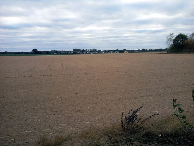 Harrowed Field