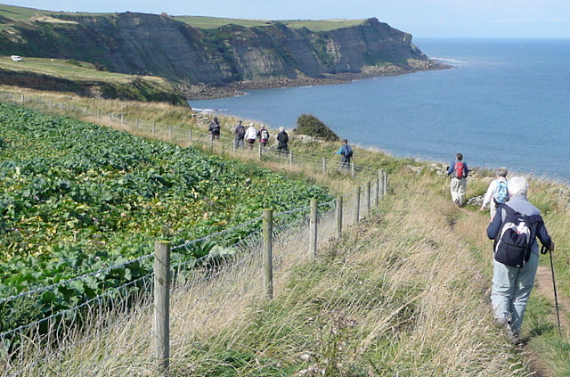 Coastal path above White Horse cliffs