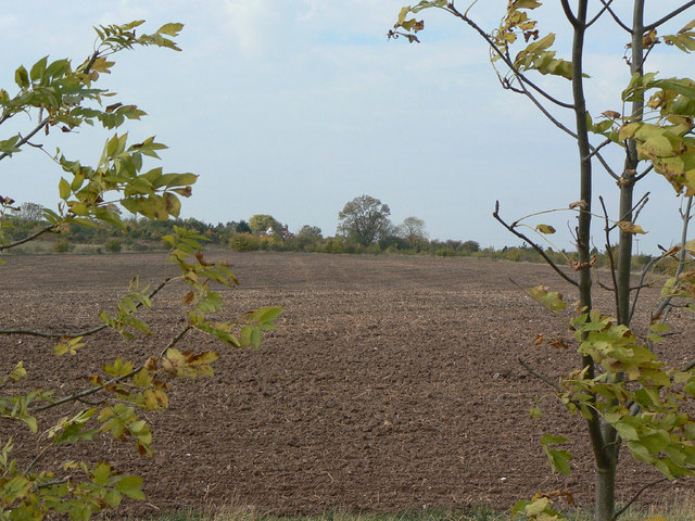 Fields on the edge of Cropwell Wolds