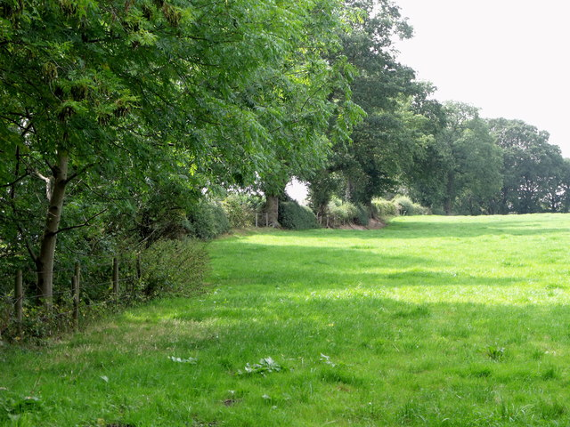 Pasture off Batemill Lane, Jodrell Bank