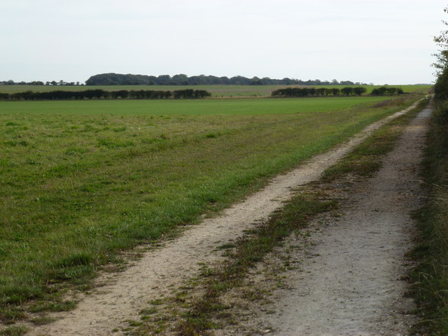 Track to Whin Close near Sedgeford, Norfolk