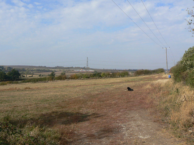 Landscape with dog