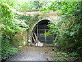 TQ3472 : Entrance to Crescent Wood Tunnel, Sydenham Hill Woods by Ian Yarham