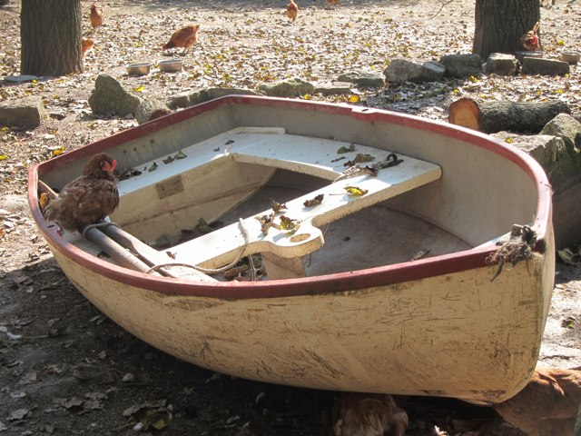 Chicken boat at Raystede