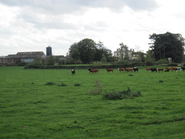 Aldborough  Grange  and  Grange  Farm