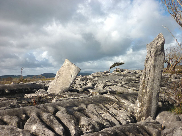 Limestone pavement on Whitbarrow