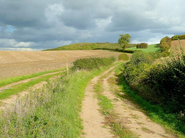 Bridleway to Sandhurst Hill