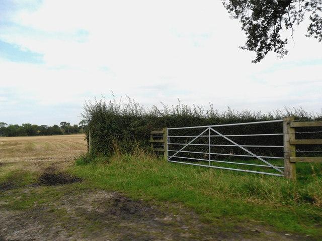 Gate off Batemill Lane, Peover Heath