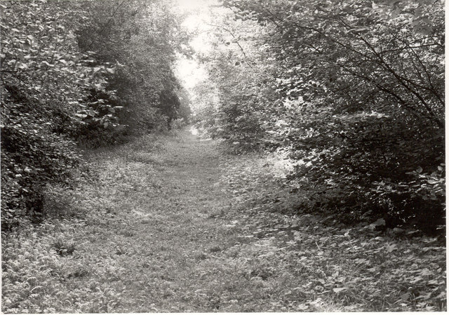 Fixed point 12 (1974), Monk's Wood NNR