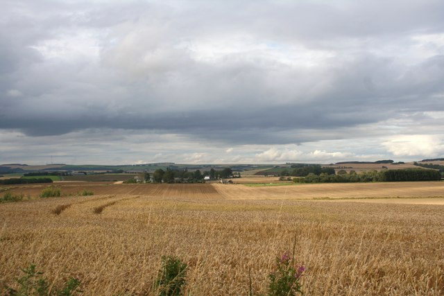 Barra Barley