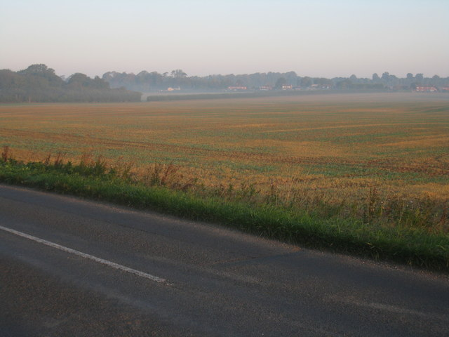 Distant view of Newfound