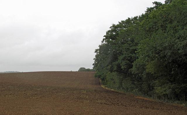 Galleyhill Green boundary