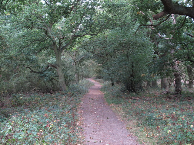 Bridleway through Galleyhill Green