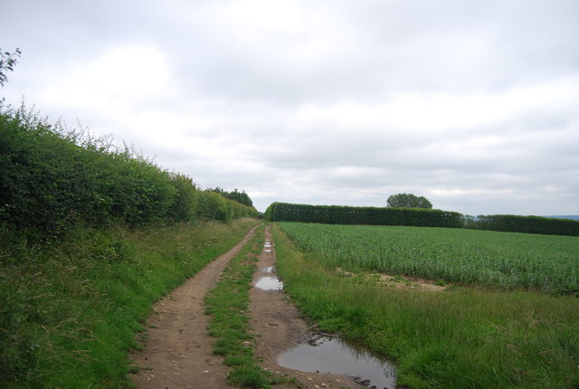 Farm track off New Pound Lane
