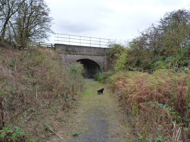 The bridleway heads under the railway