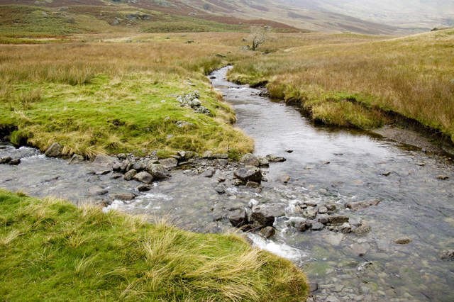 Stream junction Troutbeck