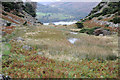 NY3917 : Small tarn behind Silver Crag by Tom Richardson