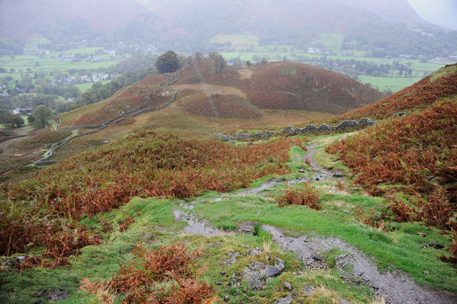 Hillside above Grasmere