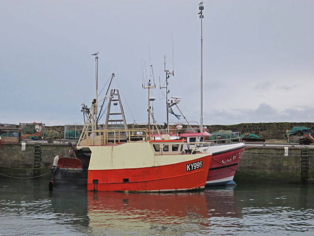 A working harbour at Pittenweem