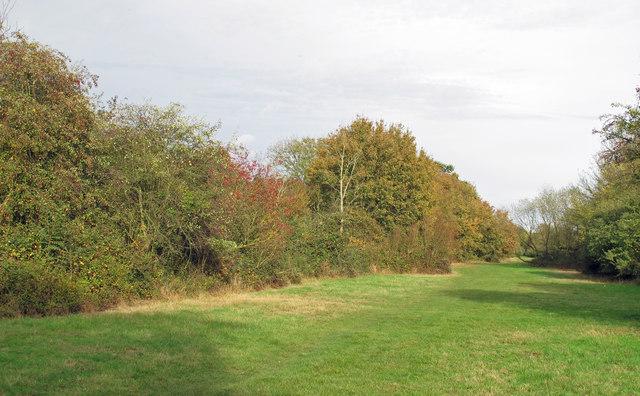 Long Green view