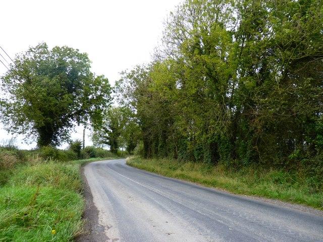 Regional road