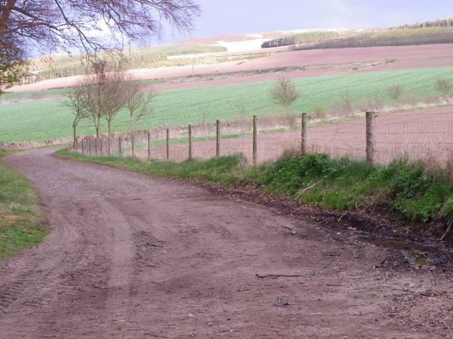 Track near Kettins