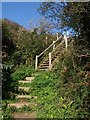SX2854 : Steps on the coast path by Derek Harper