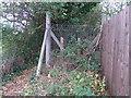 SP1039 : Willersey footpath by Liz Stone