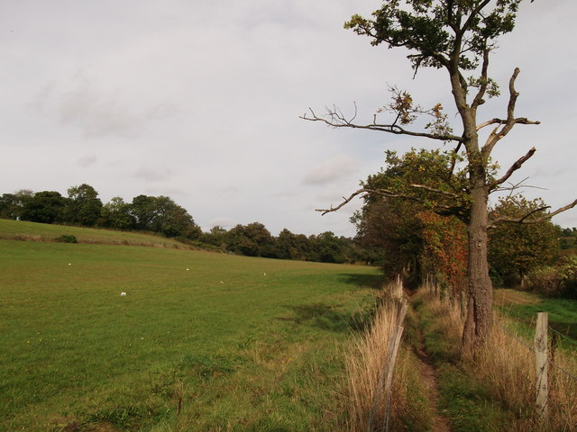 Path to Nash Lane