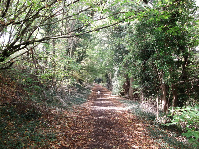 Bridleway to Furze Bottom