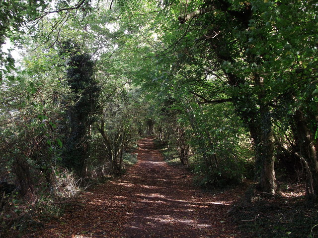 Bridleway to Furze Bottom (2)