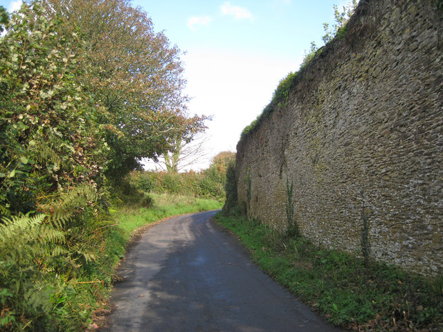 North wall of an enclosure, Lower Cotterbury