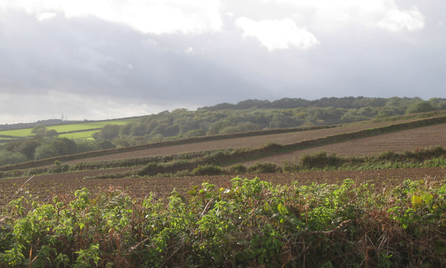 A view to Quarryhead Wood