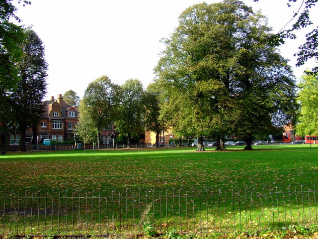 Acton Green Common