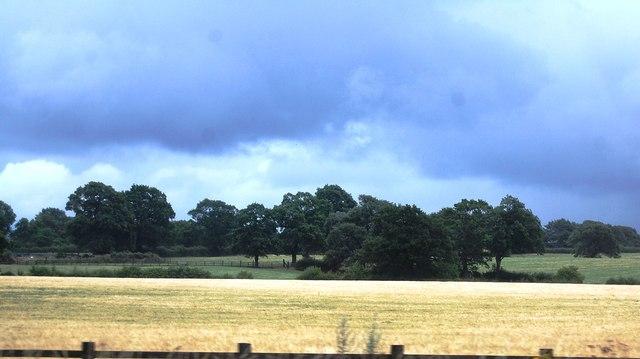 Farmland near Brockwood Hill Farm